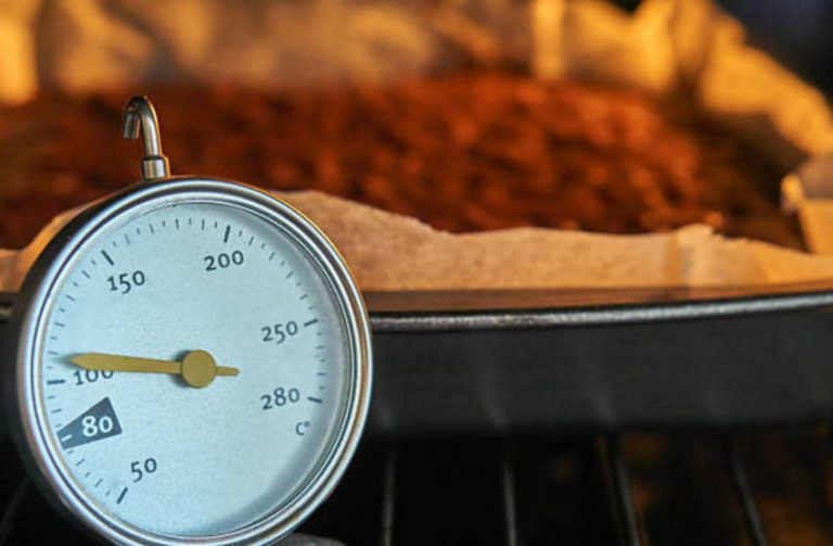 Best Digital Oven Thermometer for Baking