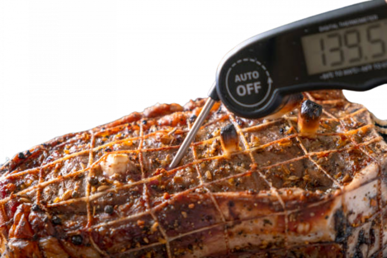 Digital Meat Thermometer Cooks Illustrated